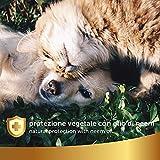 IMG-2 protezione vegetale spray con olio