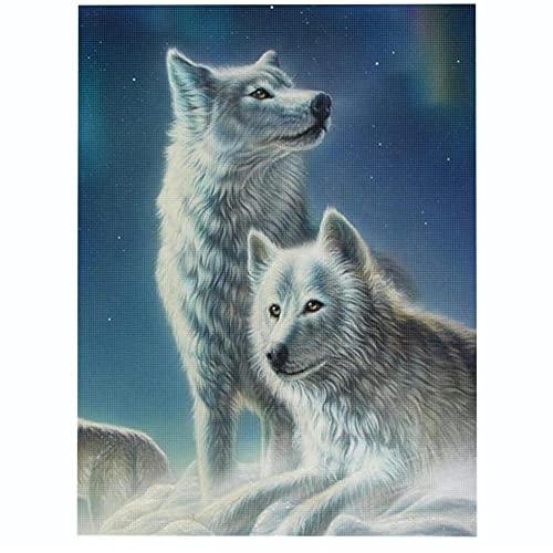 kit punto de cruz Contado completo para Adultos Lobo ártico Bordado con hilos y tela kits impresos diy 11ct Lona Preimpresa patrón de costura cruzada para decoración del hogar-40×50cm