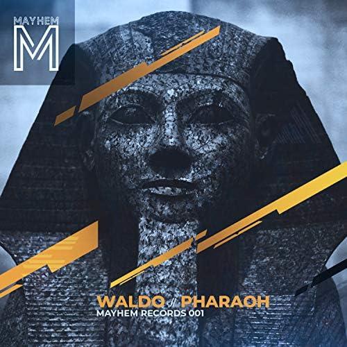 Waldo & Mayhem Music