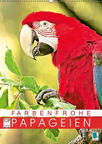 Farbenfrohe Papageien (Wandkalender 2019 DIN A2 hoch): Ara, Lori und Kakadu: farbenfroh schillert und leuchtet das Federkleid (Monatskalender, 14 Seiten )