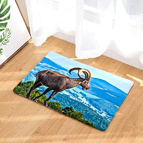 ZHENQI Cartoon Schafe Serie Bodenmatte Türmatte Tür Eingangshalle Bodenmatte Küche Badezimmermatte 017 50x80cm