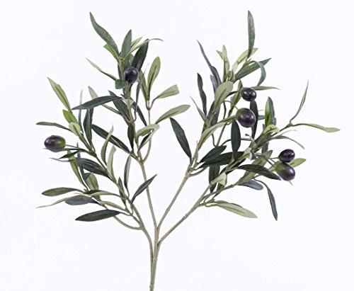 Kunstpflanze Olivenzweig mit 105 Blätter und 6 Oliven, Länge ca. 53cm - Kunstpflanze künstliche Blumen Kunstblumen Blumensträuße künstlich, Seidenblumen oder Blumen aus Plastik Kunststoff