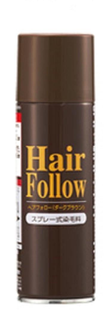 パイプ求める引き算自然に薄毛をボリュームアップ! ヘアフォロー スプレー 薄毛隠し かつら ダークブラウン (1本)