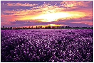PigBangbang,Stained Art Jigsaw Puzzle Kids Adult Literate Jigsaw Puzzle 2000 Piece 29.941.7'' Wooden Lavender Suset