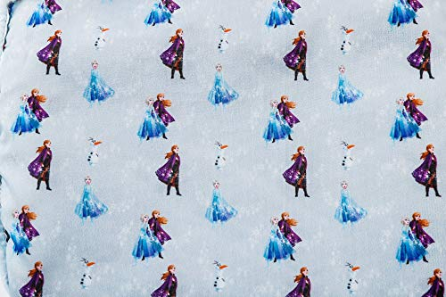 Disney アナと雪の女王 2 SPECIAL BOOK 商品画像