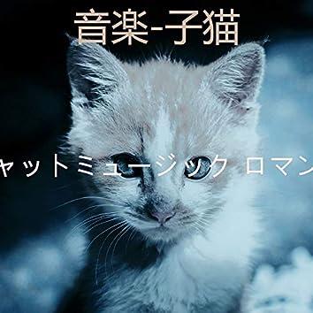 音楽-子猫