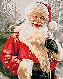 Pintar por Numeros para Adultos Niños Principiantes DIY Lienzo Pintura por Números Pinceles y Pinturas Kits, Decoraciones Pared Para el Hogar - Sin Marco 40x50 cm Barba Roja Y Blanca De Santa Claus