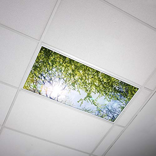 Octo Lights - Fluorescent Light Covers - 2x4 Flexible Decorative Light Diffuser Panels - Tree - for Classrooms and Offices - Tree 006