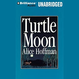 Turtle Moon cover art