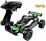 Blexy RC Racing Cars 2.4Ghz High Speed Vehicle 1:20 2WD Radio Remote Control Racing Toy Cars...