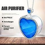 Ying-feirt purificador de aire USB portátil para uso personal collar negativo Lonizer Anion Air Cleaner ambientador para cigarrillos humo/alergias/bacterias caspa mascotas