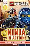LEGO NINJAGO Ninja in Action! (D...