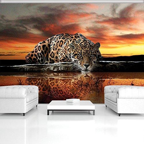 ForWall Fototapete Vlies - Tapete Moderne Wanddeko Jaguar und Sonnenuntergang VEXXXL (416cm. x 254cm.) AMF126VEXXXL Wandtapete Design Tapete Wohnzimmer Schlafzimmer