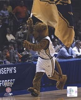 University of Pittsburgh Panthers Mascot, 2004 Photo Print (8 x 10)