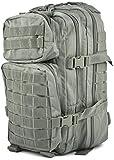 Mil-Tec EE.UU. Mochilla Assault Pack (Small/Foliage)