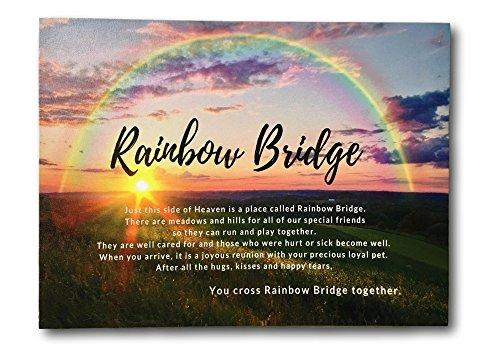 BANBERRY DESIGNS Haustier-Gedenk-Druck – LED-beleuchteter Leinwanddruck mit Gedicht der Regenbogenbrücke – Regenbogen-Hintergrund mit Sonnenuntergang – Geschenk für Haustiere