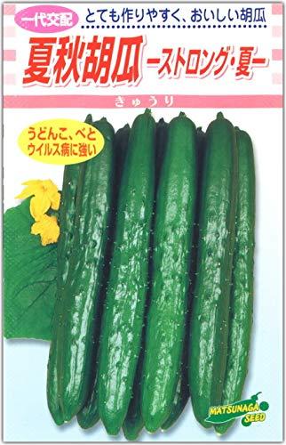 キュウリ 種子 ストロング夏 17粒 夏秋胡瓜