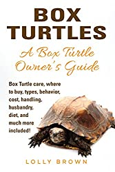 Image: Box Turtles: Box Turtle care, where to buy, types, behavior, cost, handling, husbandry, diet, and much more included! A Box Turtle Owner's Guide, by Lolly Brown (Author). Publisher: NRB Publishing (January 12, 2017)