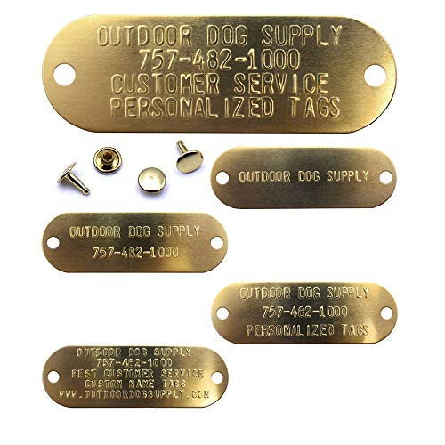 1' X 3' Custom Brass Dog Name Tag ID Plates with Raised Text