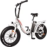 DJ Folding Bike Step Thru 750W 48V 13Ah Power Electric Bicycle, Pearl White, LED Bike Light, Suspension Fork and Shimano Gear