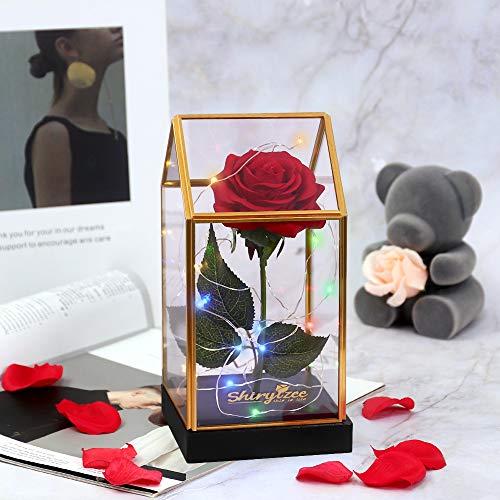 shirylzee Kit de Rosas,Rosa Eterna luz LED Flor Bella y Bestia Rosa Encantada de Seda,Cubierta de vidrio forma única,Regalos Magicos Decor para Aniversario Cumpleaños Bodas Navidad San Valentín(Rojo)