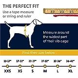 Zoom IMG-1 quinzee giacca impermeabile per cani