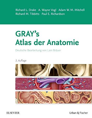 Gray's Atlas der Anatomie: Deutsche Bearbeitung von Lars Bräuer