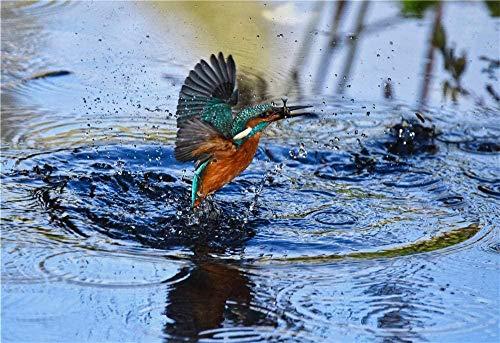 Groene En Bruine Vogel Vliegen Over Watermassa Voor Kinderen Volwassenen Legpuzzel - 1000 Stukjes-