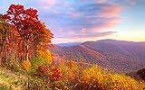 Leomuzi 1000 piezas Jigsaw Lscape Autumn Red Leaves Deep es Puzzle de madera para niños y adultos juguetes de madera