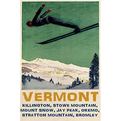 Skis Ski Skiing in Vermont Mountains Winter Sport 16X20 Vintage Poster FREE S//H