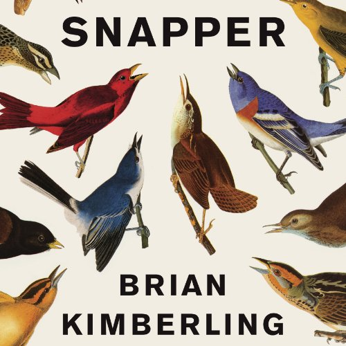 Snapper audiobook cover art