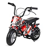 ECOXTREM Mini-Elektromotorrad für Kinder, Unisex, Motor 300 W, 36 V Akku und Gasgriff am Griff,...