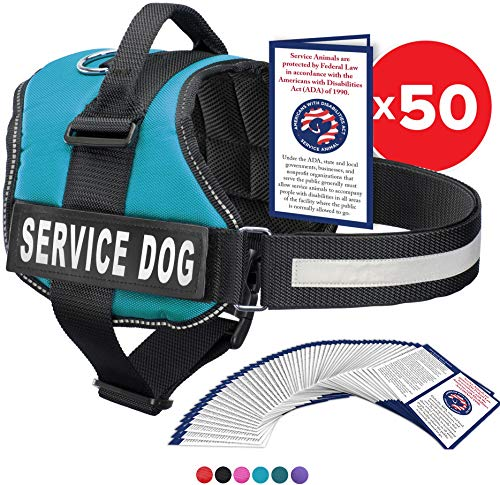 Service Dog Vest With Hook and Loop Straps and Handle - Harness is Available in 8 Sizes From XXXS to XXL - Service Dog Harness Features Reflective Patch and Comfortable Mesh Design (Blue, XL)