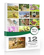 Pack of 12 high quality British Wildlife Landscape Greeting Cards - 12 Different Designs. (A6 Size - 105mm x 148mm when folded) ✩ Professionally printed ✩ Supplied with white envelopes Printed on high quality 300gsm card with a slight sheen. Like a s...