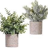 FagusHome Plantas Artificiales en macetas 2 Piezas Mini Plantas de eucalipto Artificiales en macetas Plantas Artificiales de plástico Verde Falso en macetas para decoración de Interiores (B)