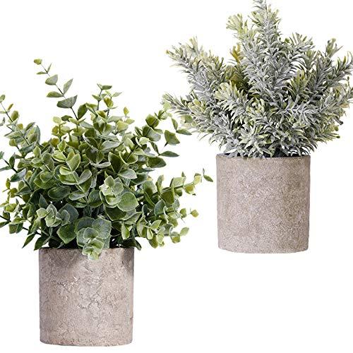 FagusHome Plantas Artificiales en macetas 2 Piezas Mini Plantas de eucalipto Artificiales en macetas...