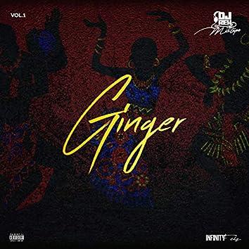Ginger Afrobeats 2020 Mixtape