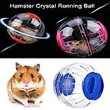 Womdee Hamster läuft