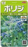 サカタのタネ 実咲ハーブ8085 ボリジ ハーブ 00928085