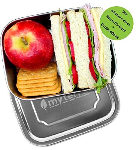 myterra® Lunchbox 1000ml aus rostfreiem Edelstahl inkl. GRATIS Rezepte Ebook für das nachhaltige und plastikfreie Transportieren von Mahlzeiten. Ideal für Kinder und Erwachsene | Schule und Arbeit