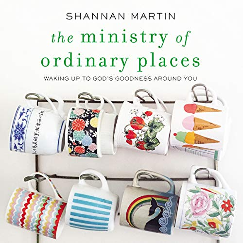 The Ministry of Ordinary Places audiobook cover art