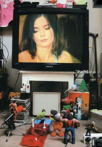 Björk: Unplugged/Live 'n' Loud On MTV [DVD] [2007]
