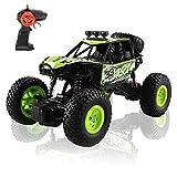 Arkmiido Auto Telecomandata per Bambini, 4x4 RC Crawler Camion 1:20 4WD Fuoristrada per Ragazze Ragazzi