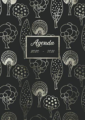 Agenda 2020 – 2021: deux ans Agenda Semainier et Calendrier Janvier 2020 à Décembre 2021 - Agenda Journalier – Couverture Souple finition Matte