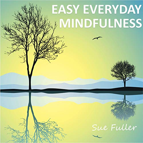 Easy Everyday Mindfulness cover art