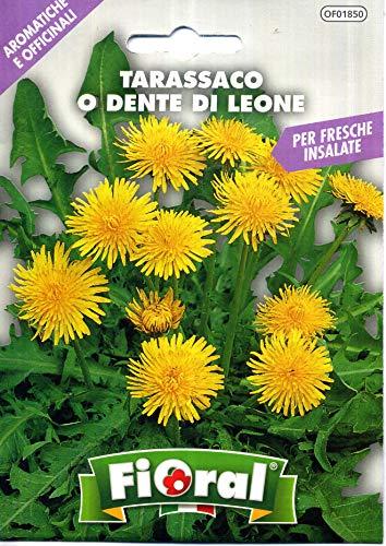 Sementi di piante aromatiche e officinali in bustina ad uso amatoriale (TARASSACO O DENTE DI LEONE)