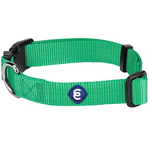 """Blueberry Pet Essentials 22 Colors Classic Dog Collar, Emerald, Small, Neck 12""""-16"""", Nylon Collars for Dogs"""