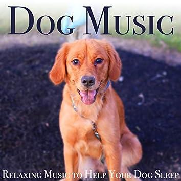 Dog Music: Relaxing Music to Help Your Dog Sleep