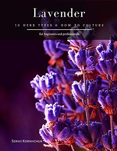 Lavender: 13 herb Types & How to Cultu