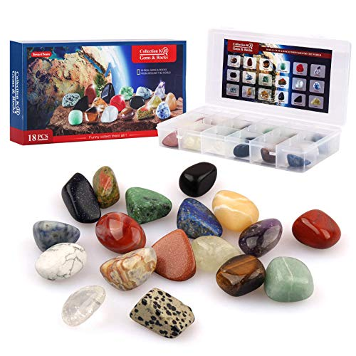 SmartYeen 18pcs Rock Collection for Kids,Gemstones & Rocks Set with Educational Information Sheet and Display case Science Gift for Boys Girls